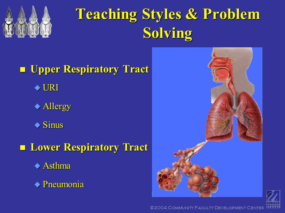 n Upper Respiratory Tract u URI u Allergy u Sinus n Lower Respiratory Tract u Asthma u Pneumonia Teaching Styles & Problem Solving ©2004 Community Faculty Development Center