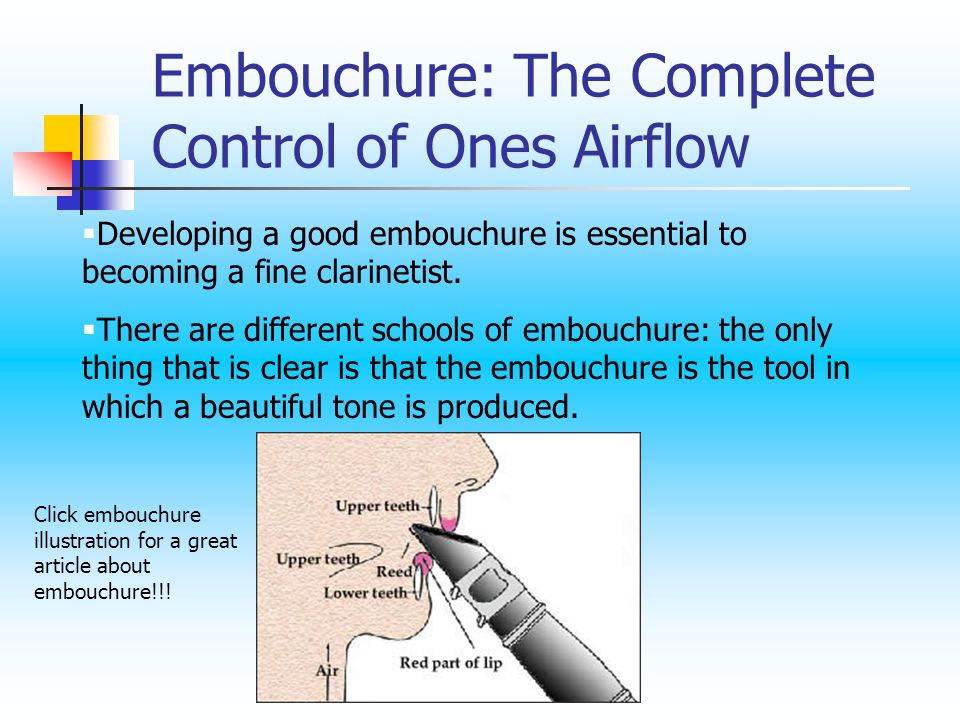 Developing a good embouchure is essential to becoming a fine clarinetist.
