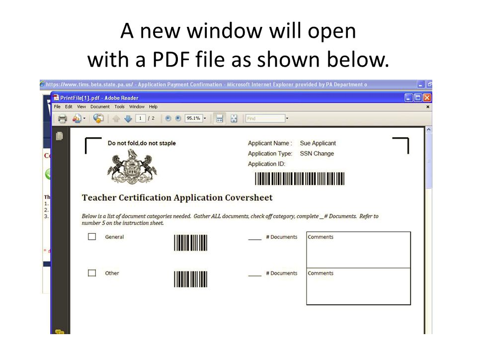 A new window will open with a PDF file as shown below.