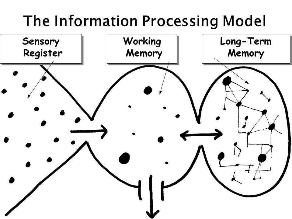 Sensory Register Sensory Register Working Memory Working Memory Long-Term Memory Long-Term Memory The Information Processing Model
