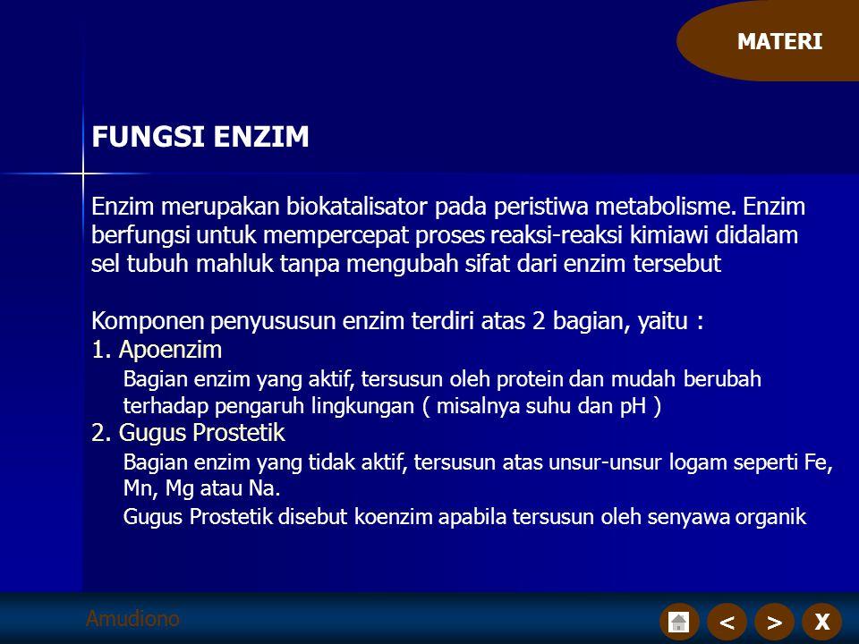 X>< Amudiono FUNGSI ENZIM Enzim merupakan biokatalisator pada peristiwa metabolisme. Enzim berfungsi untuk mempercepat proses reaksi-reaksi kimiawi di