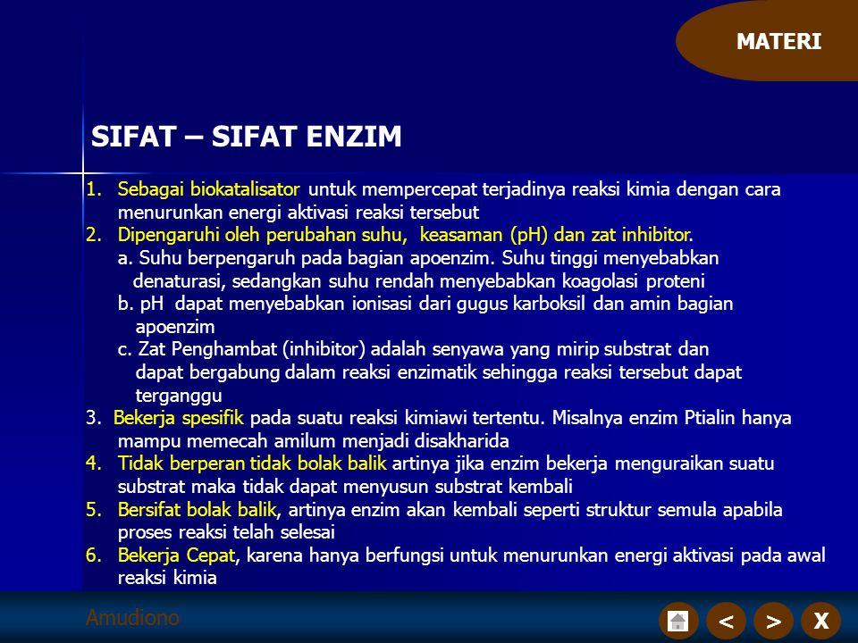 X>< MATERI Amudiono SIFAT – SIFAT ENZIM 1.Sebagai biokatalisator untuk mempercepat terjadinya reaksi kimia dengan cara menurunkan energi aktivasi reak
