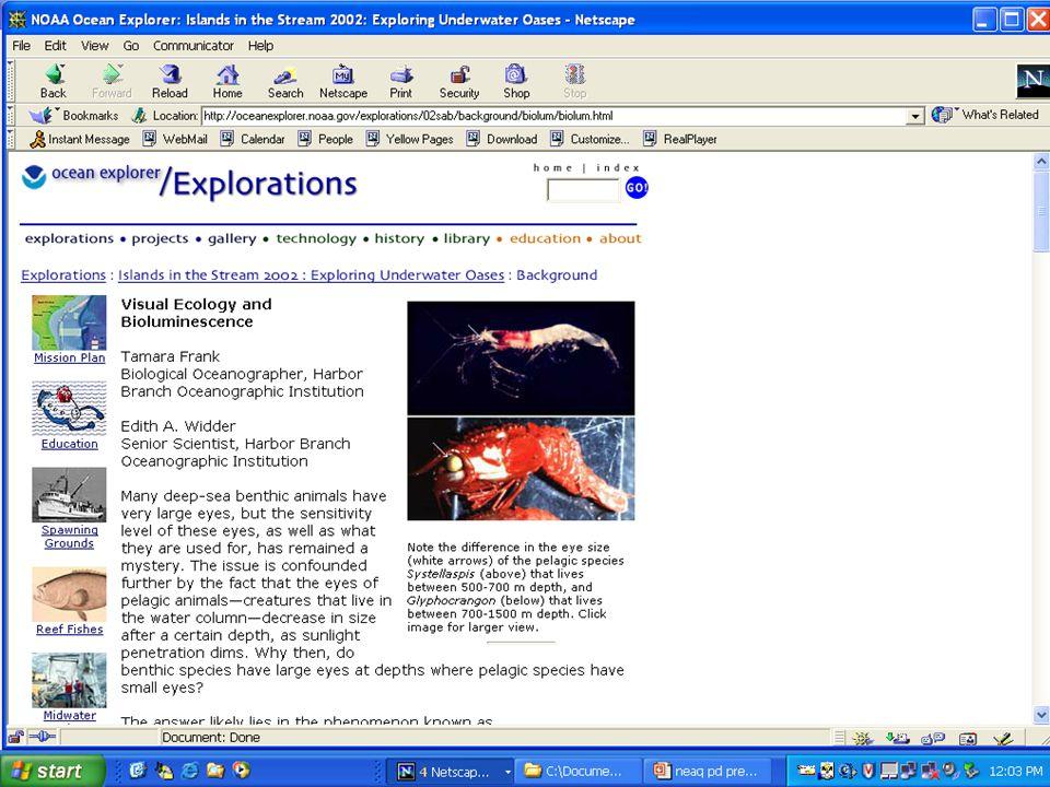 Ocean Explorer Web Site  http://oceanexplorer.noaa.gov