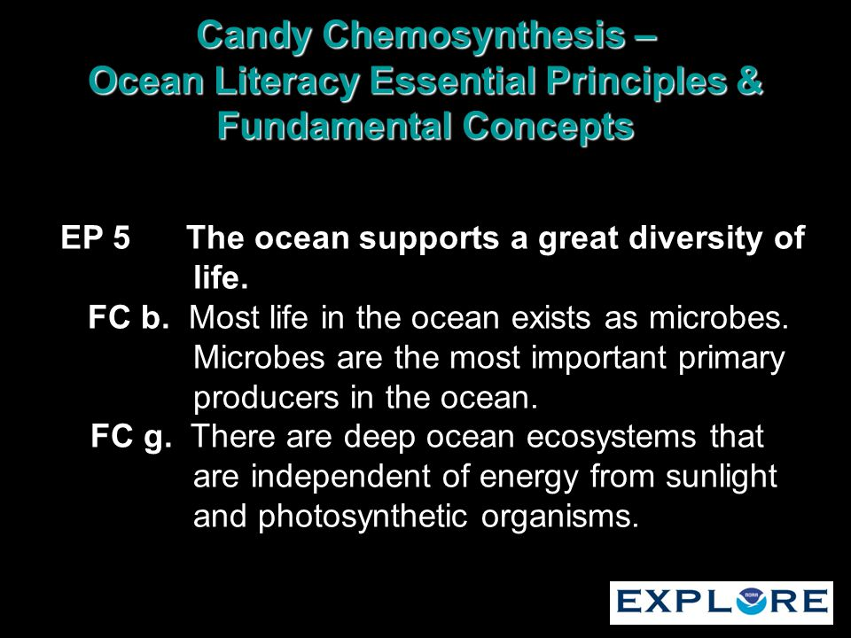EP 5 The ocean supports a great diversity of life. FC b. Most life in the ocean exists as microbes. Microbes are the most important primary producers