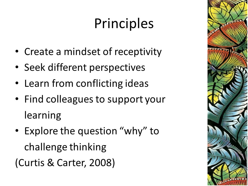 Principles Create a mindset of receptivity Seek different perspectives Learn from conflicting ideas Find colleagues to support your learning Explore the question why to challenge thinking (Curtis & Carter, 2008)