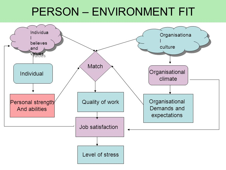 PERSON – ENVIRONMENT FIT Individua l believes and values Organisationa l culture Organisationa l culture Individual Personal strength And abilities Or