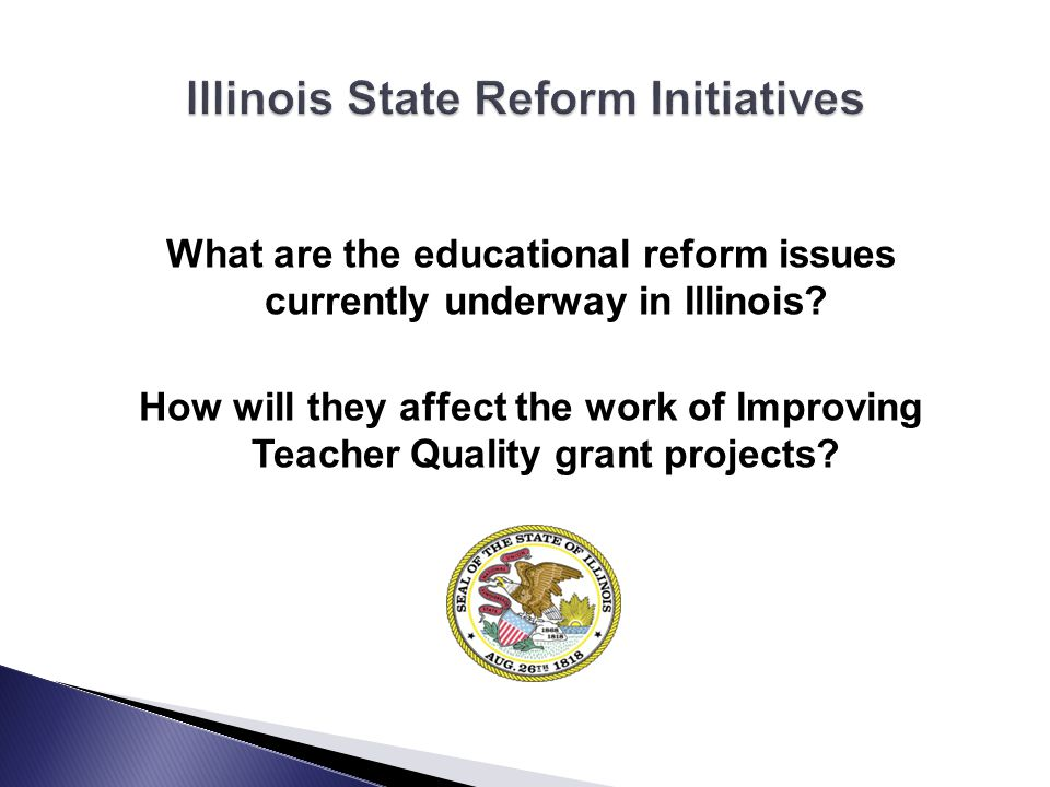 What are the educational reform issues currently underway in Illinois.