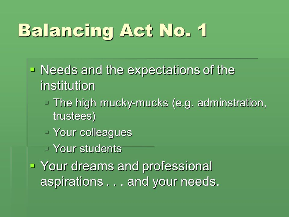 Balancing Act No. 1  Needs and the expectations of the institution  The high mucky-mucks (e.g.