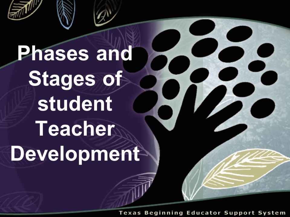 Phases and Stages of student Teacher Development