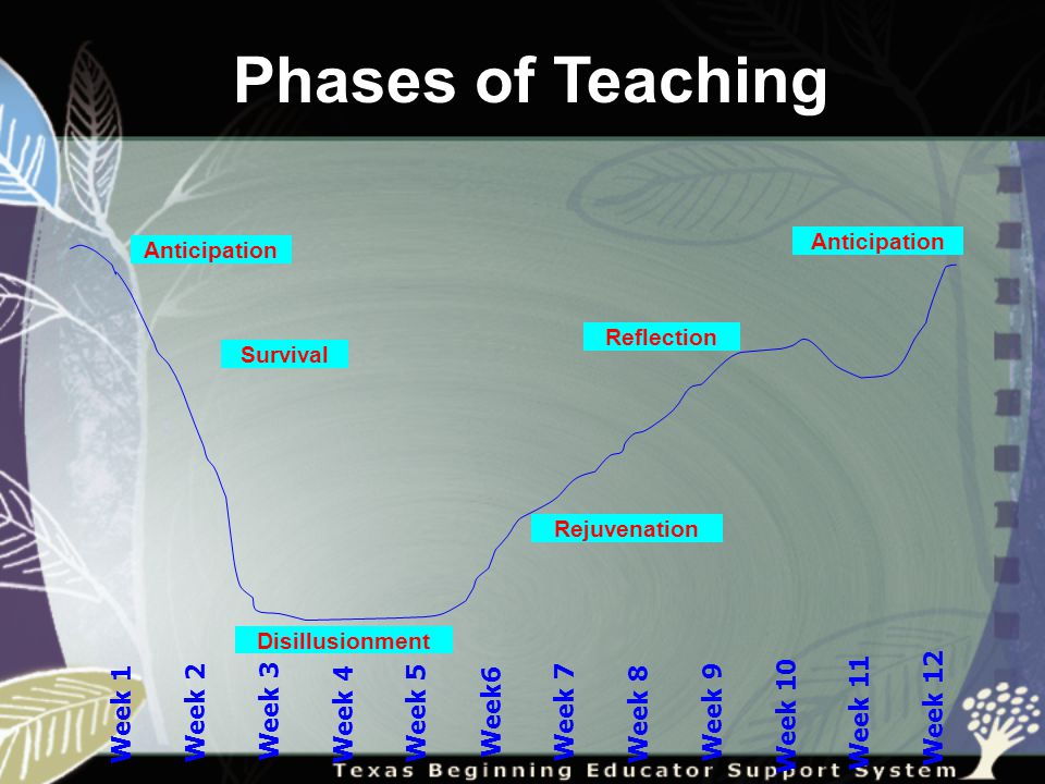 Phases of Teaching Week 1 Week 2 Week 3 Week 4 Week 5 Week6 Week 7 Week 8 Week 9 Week 10 Week 11 Week 12 Survival Anticipation Disillusionment Rejuvenation Reflection Anticipation
