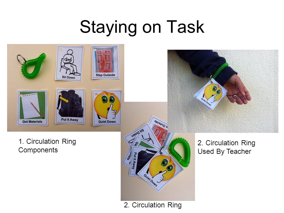 Staying on Task 1. Circulation Ring Components 2.