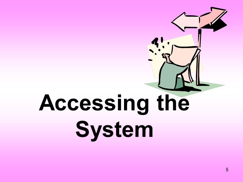 5 Accessing the System