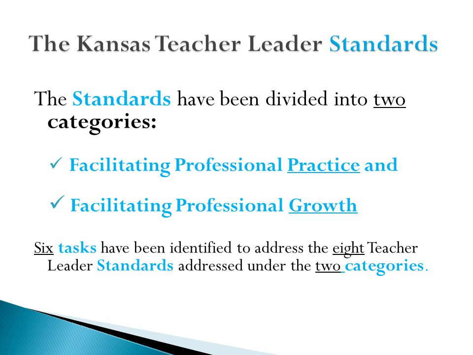 The Standards have been divided into two categories: Facilitating Professional Practice and Facilitating Professional Growth Six tasks have been identified to address the eight Teacher Leader Standards addressed under the two categories.