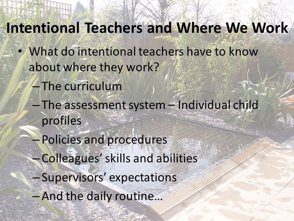 Intentional Teachers and Where We Work What do intentional teachers have to know about where they work? – The curriculum – The assessment system – Ind