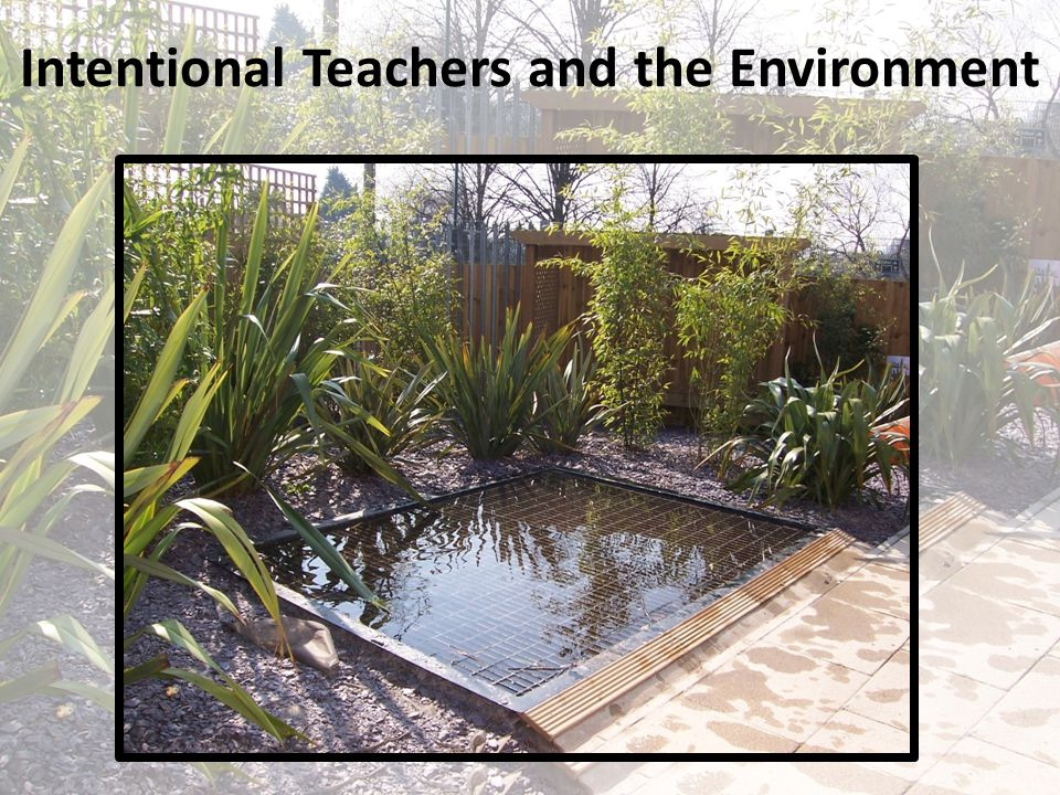 Intentional Teachers and the Environment