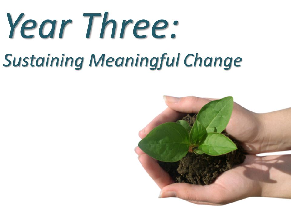 Year Three: Sustaining Meaningful Change