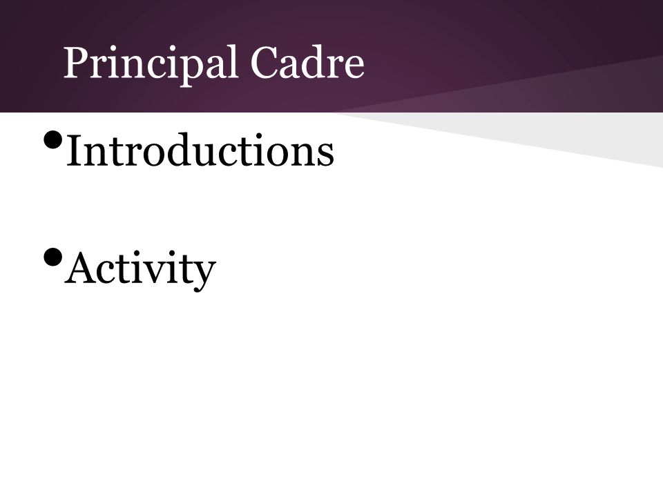Principal Cadre Introductions Activity