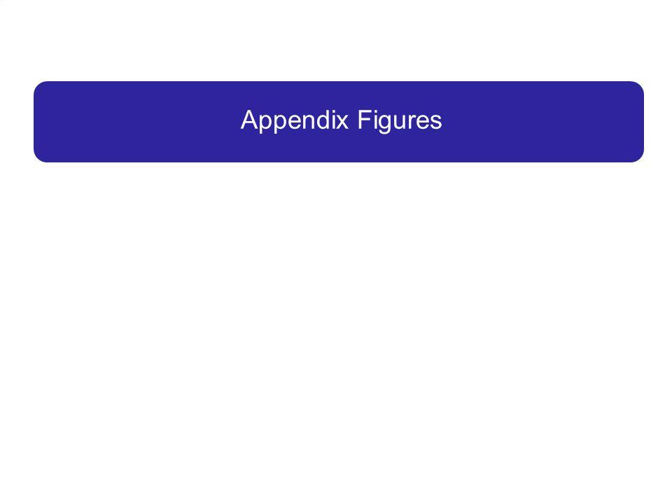 Appendix Figures