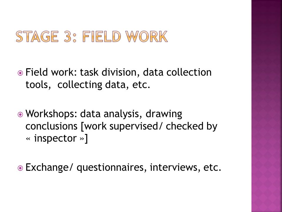  Field work: task division, data collection tools, collecting data, etc.