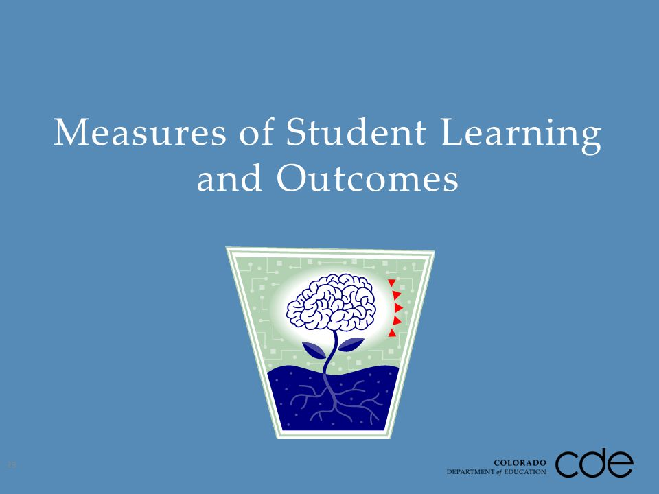 Measures of Student Learning and Outcomes 29