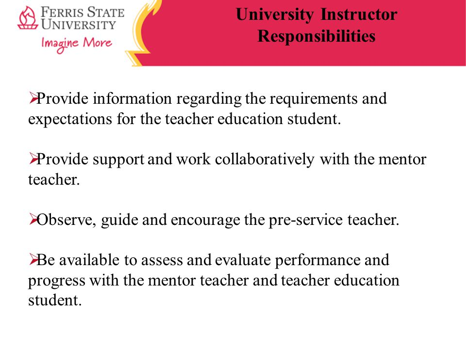  Provide information regarding the requirements and expectations for the teacher education student.