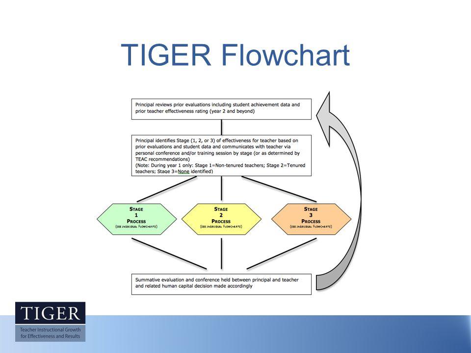 TIGER Flowchart