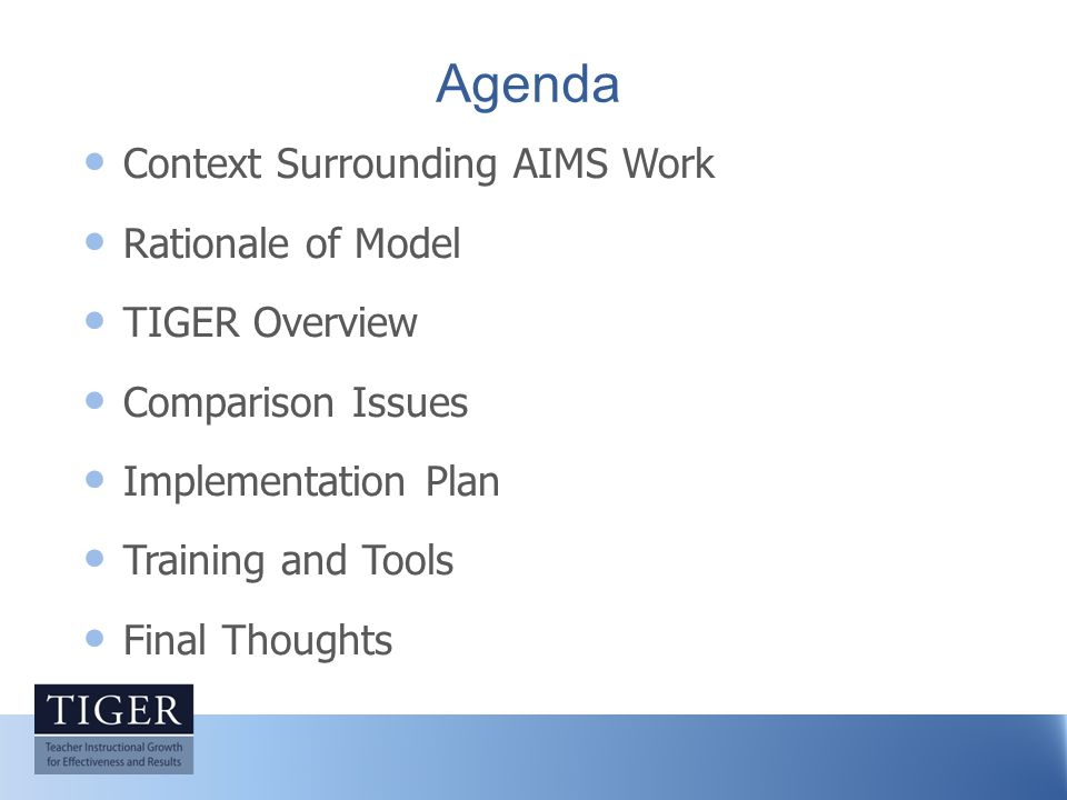 Agenda Context Surrounding AIMS Work Rationale of Model TIGER Overview Comparison Issues Implementation Plan Training and Tools Final Thoughts