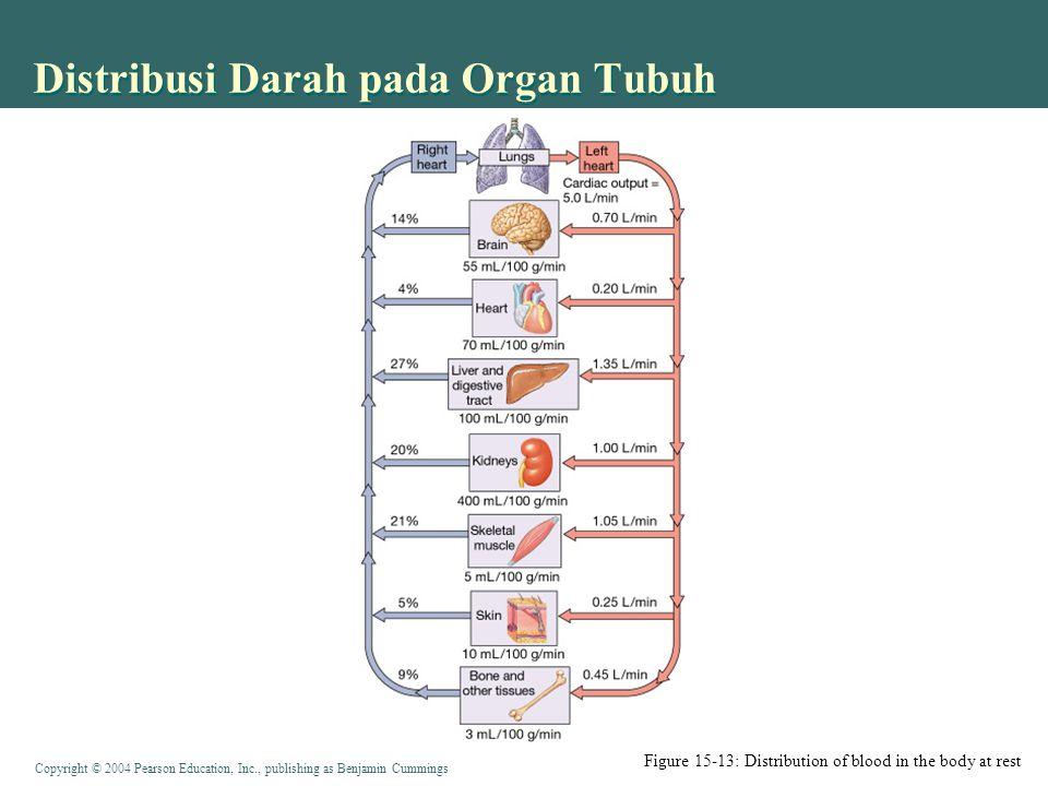 Copyright © 2004 Pearson Education, Inc., publishing as Benjamin Cummings Distribusi Darah pada Organ Tubuh Figure 15-13: Distribution of blood in the