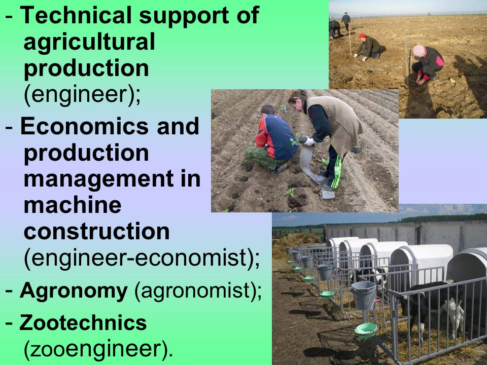 - Technical support of agricultural production (engineer); - Economics and production management in machine construction (engineer-economist); - Agronomy (agronomist); - Zootechnics (zoo engineer ).
