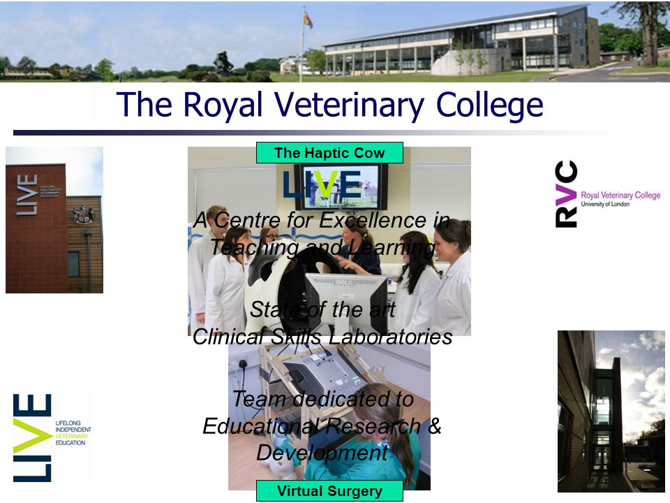 Clinical Skills Laboratories Simulators and Models High 'tech' Low 'tech' Large Animal Small Animal