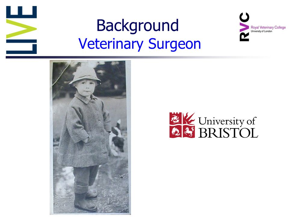 Background Veterinary Surgeon