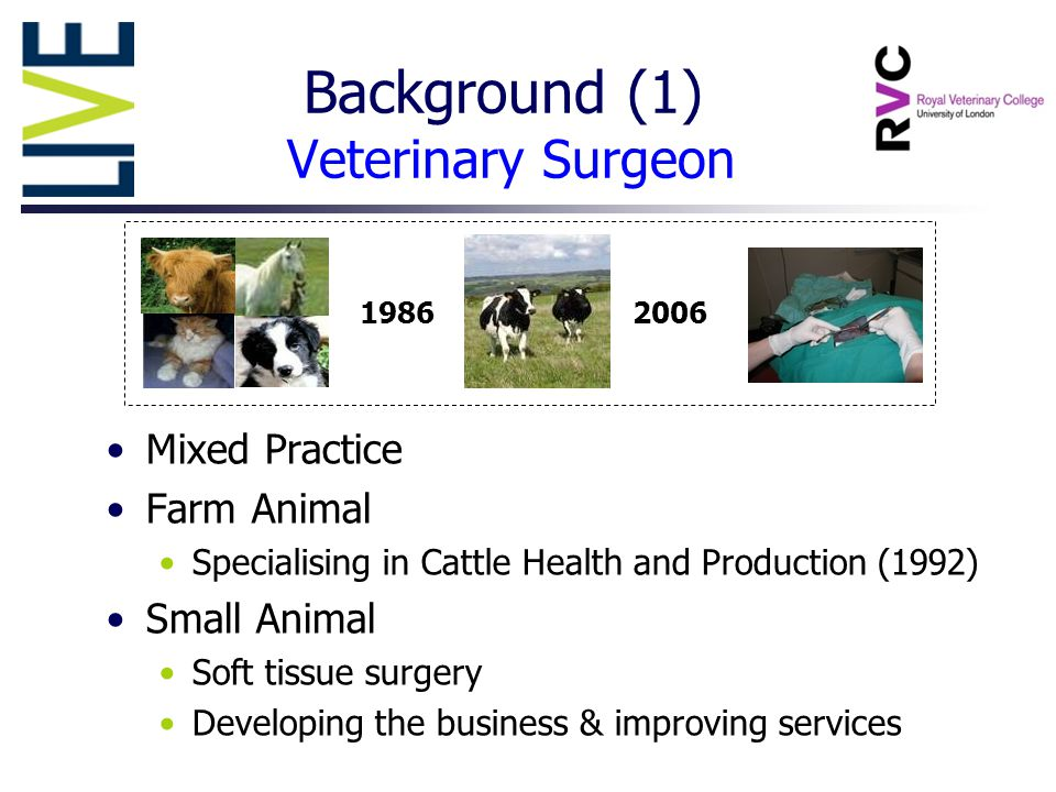 19862006 Mixed Practice Farm Animal Specialising in Cattle Health and Production (1992) Small Animal Soft tissue surgery Developing the business & improving services Background (1) Veterinary Surgeon
