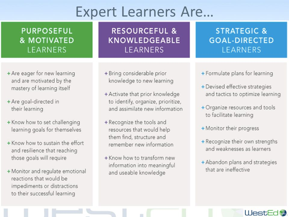 Expert Learners Are…
