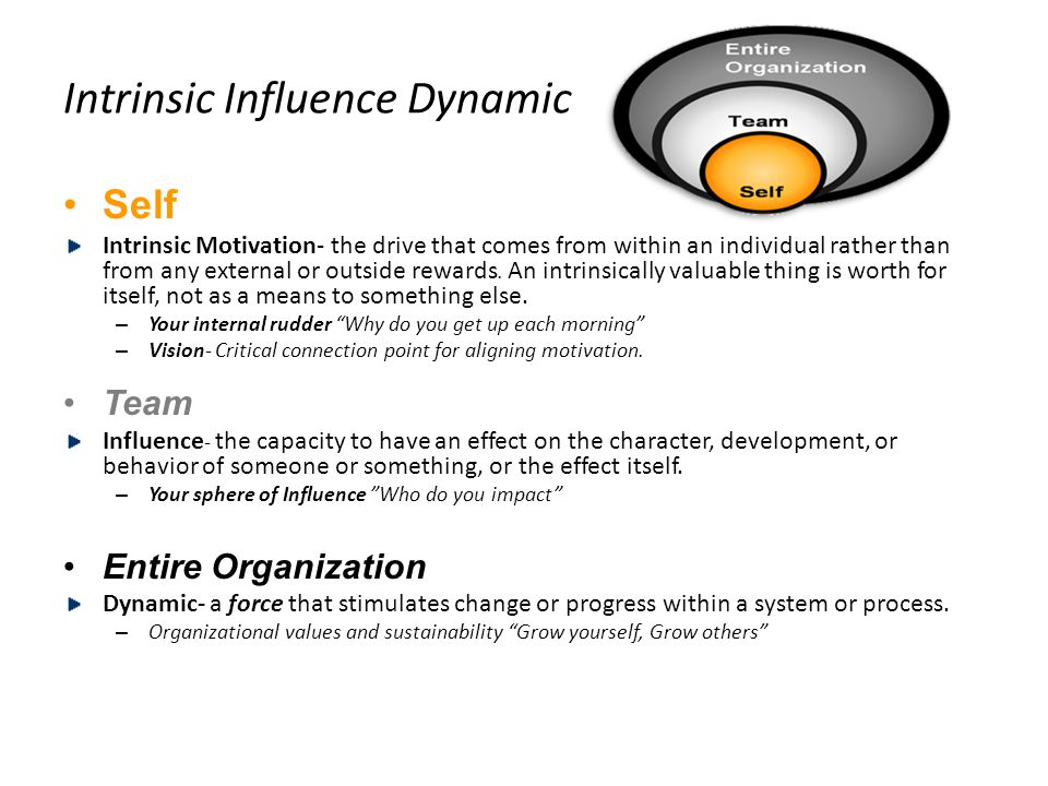 Intrinsic Influence Dynamic Self Intrinsic Motivation- the drive that comes from within an individual rather than from any external or outside rewards.