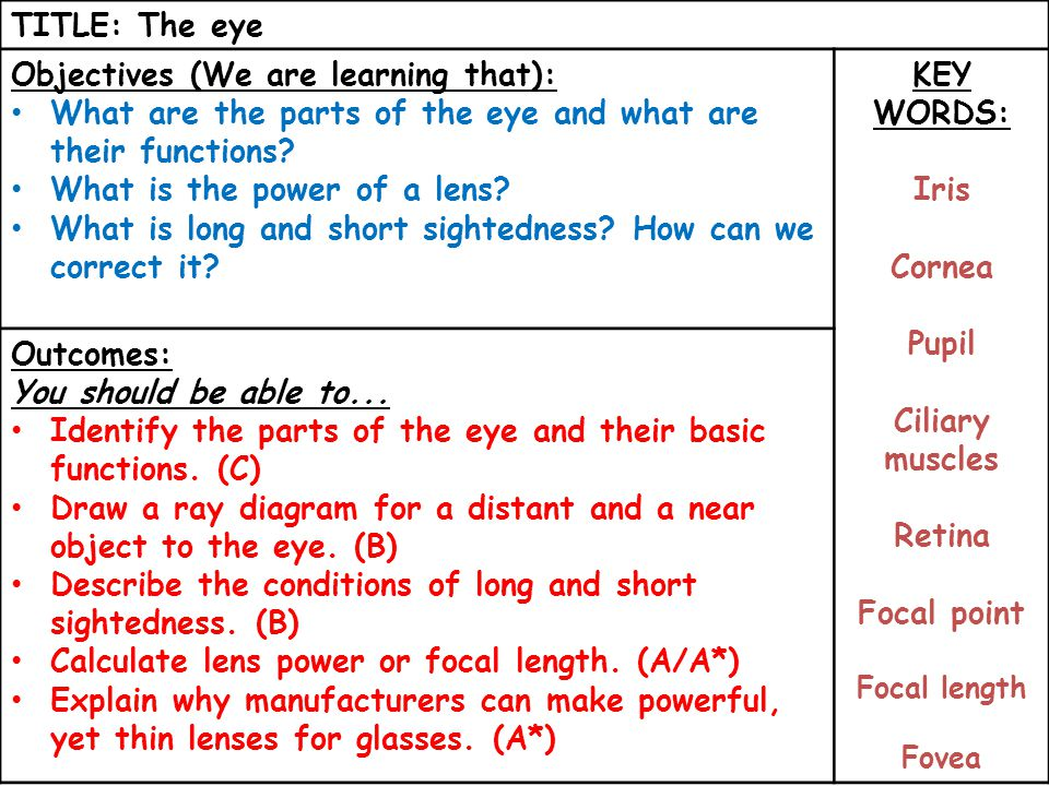 TITLE: The eye Objectives (We are learning that): What are the parts of the eye and what are their functions.