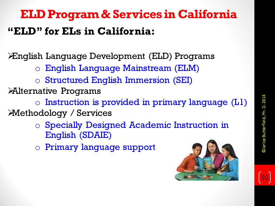 ELD Program & Services in California ELD for ELs in California:  English Language Development (ELD) Programs o English Language Mainstream (ELM) o Structured English Immersion (SEI)  Alternative Programs o Instruction is provided in primary language (L1)  Methodology / Services o Specially Designed Academic Instruction in English (SDAIE) o Primary language support 80 ©Jarice Butterfield, Ph.