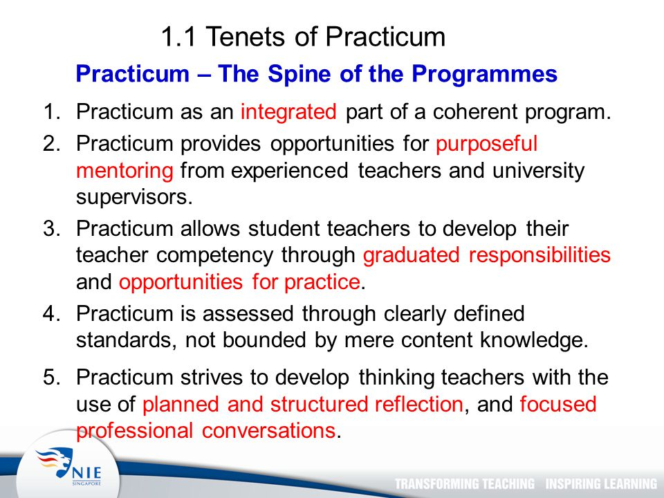 1.1 Tenets of Practicum Practicum – The Spine of the Programmes 1.Practicum as an integrated part of a coherent program.