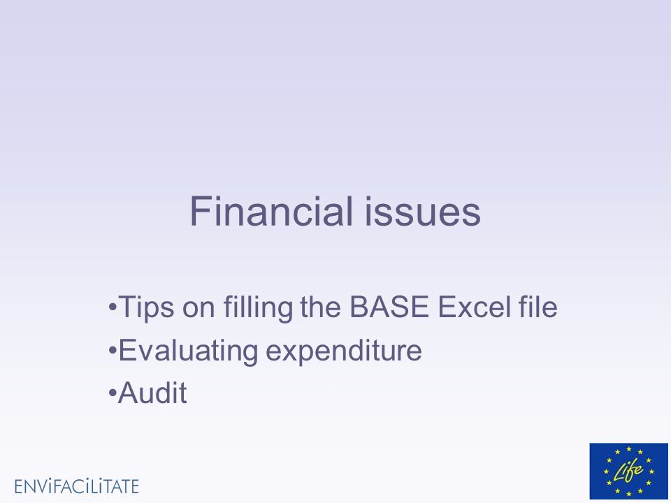 Financial issues Tips on filling the BASE Excel file Evaluating expenditure Audit