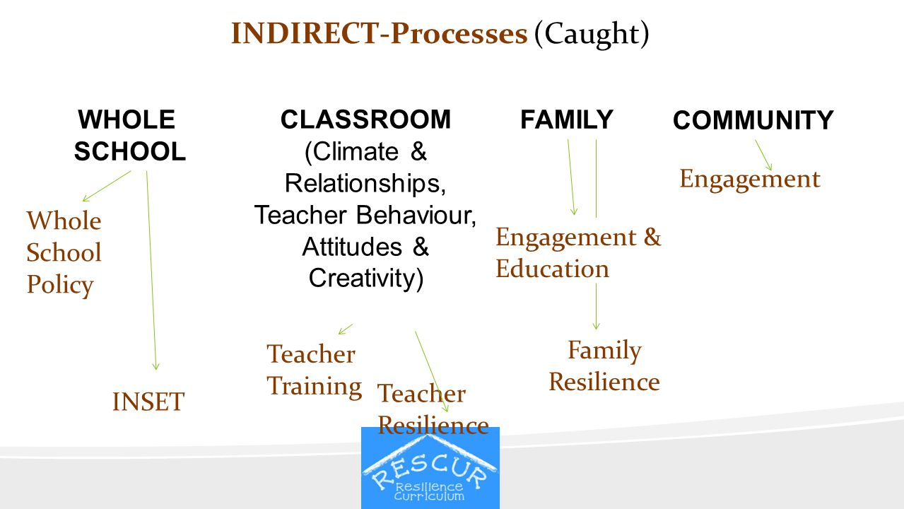 INDIRECT-Processes (Caught) CLASSROOM (Climate & Relationships, Teacher Behaviour, Attitudes & Creativity) WHOLE SCHOOL FAMILY COMMUNITY Whole School
