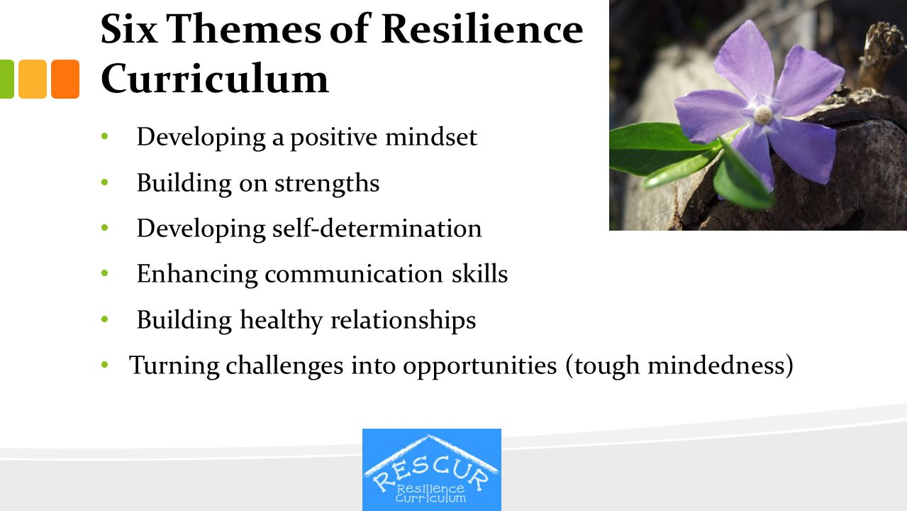Six Themes of Resilience Curriculum Developing a positive mindset Building on strengths Developing self-determination Enhancing communication skills B