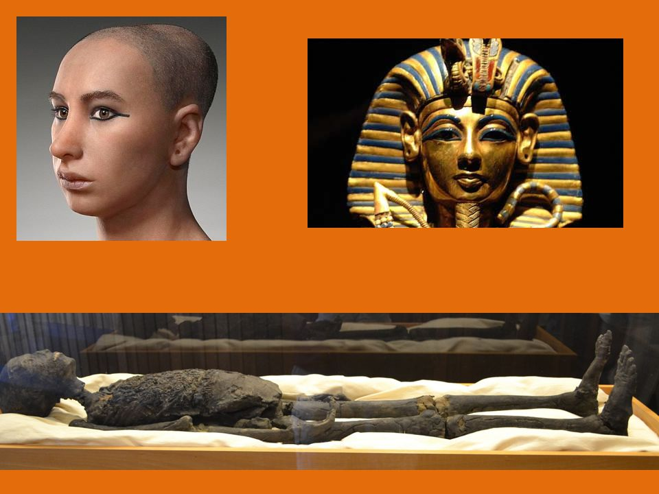 16.In medicine what materials were the Egyptians the first to use.