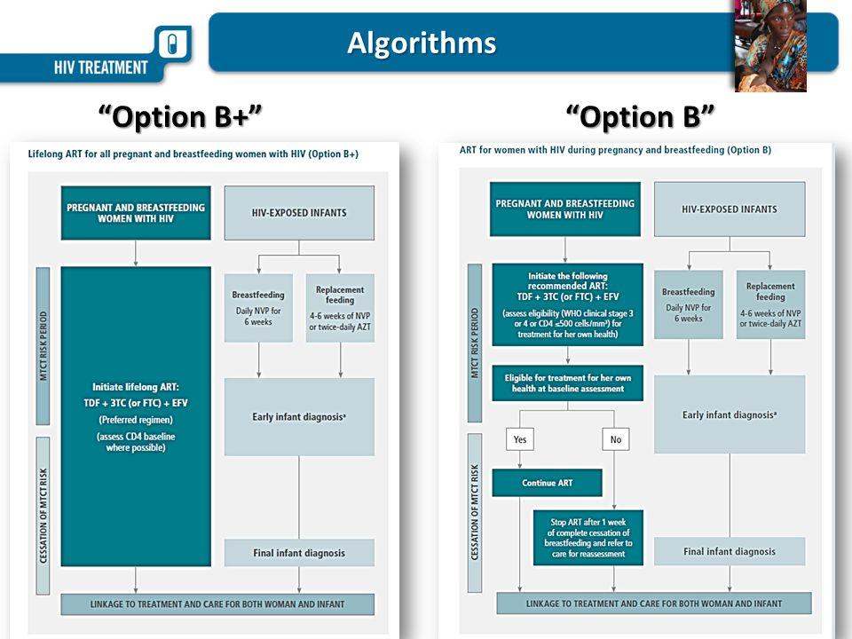 Algorithms Option B+ Option B Option B+ Option B