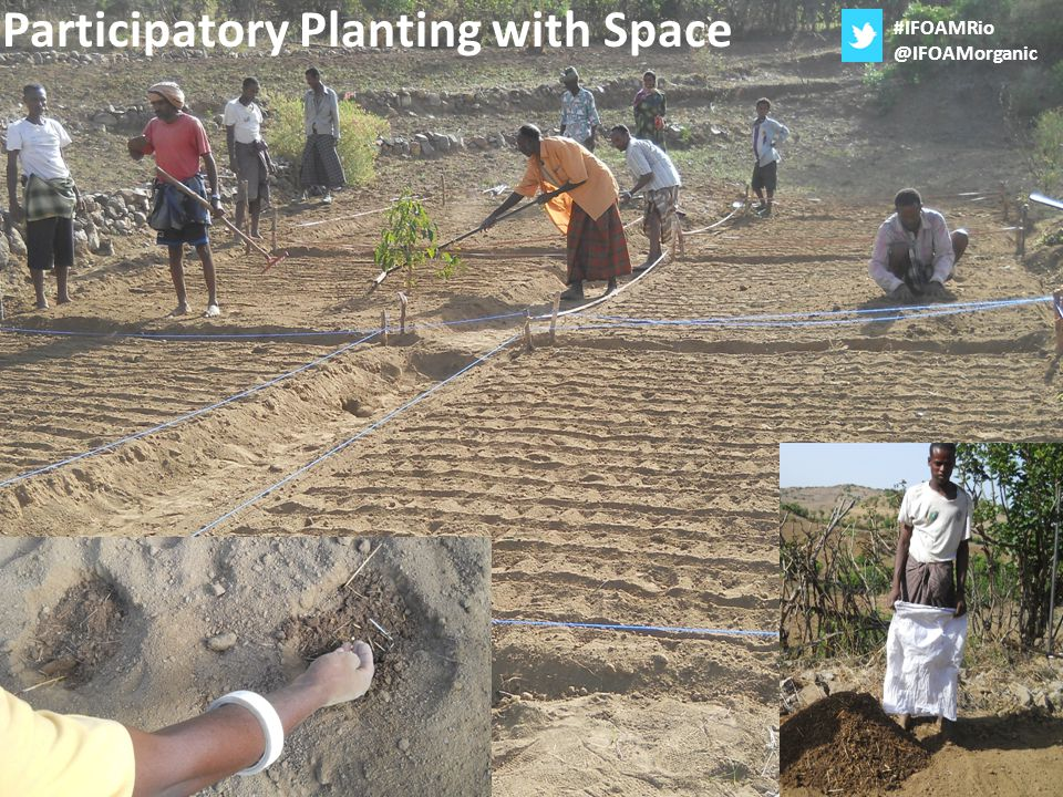 Participatory Planting with Space #IFOAMRio @IFOAMorganic