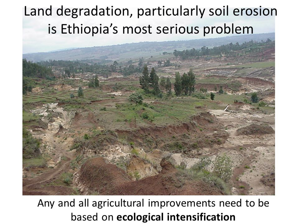 Land degradation, particularly soil erosion is Ethiopia's most serious problem Any and all agricultural improvements need to be based on ecological in