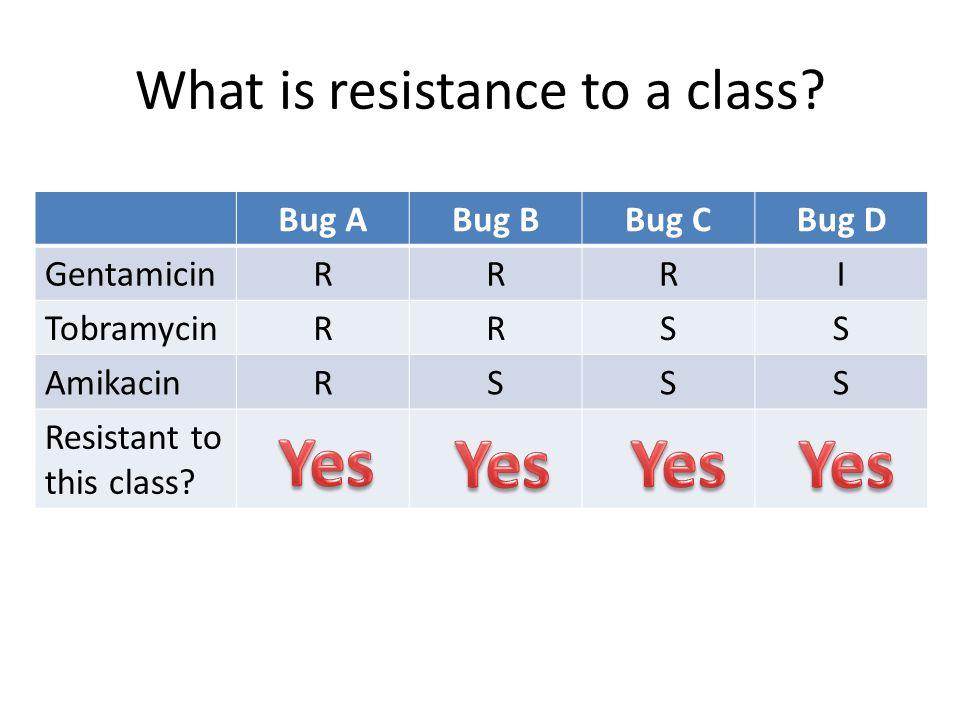 What is resistance to a class? Bug ABug BBug CBug D GentamicinRRRI TobramycinRRSS AmikacinRSSS Resistant to this class?