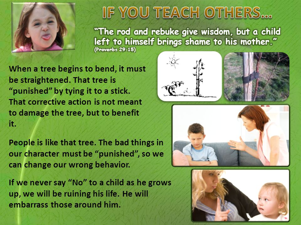 """When a tree begins to bend, it must be straightened. That tree is """"punished"""" by tying it to a stick. That corrective action is not meant to damage the"""