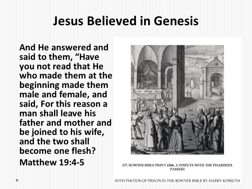"Jesus Believed in Genesis And He answered and said to them, ""Have you not read that He who made them at the beginning made them male and female, and s"