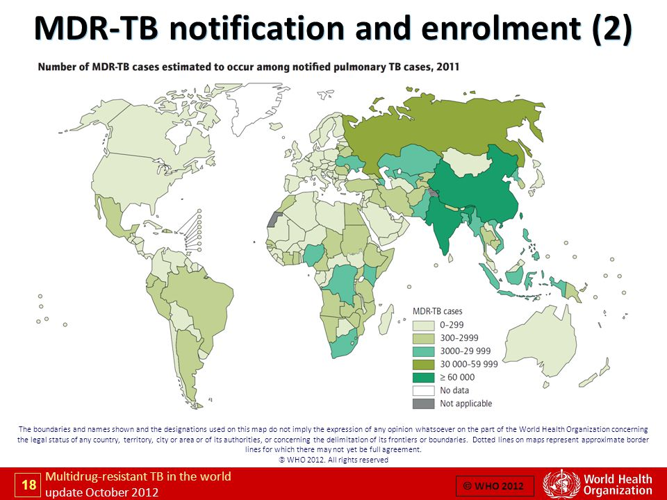 18 Multidrug-resistant TB in the world update October 2012  WHO 2012 The boundaries and names shown and the designations used on this map do not imply the expression of any opinion whatsoever on the part of the World Health Organization concerning the legal status of any country, territory, city or area or of its authorities, or concerning the delimitation of its frontiers or boundaries.