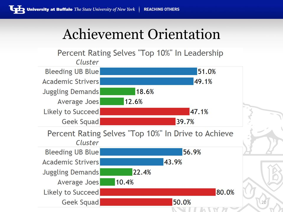 Achievement Orientation 20