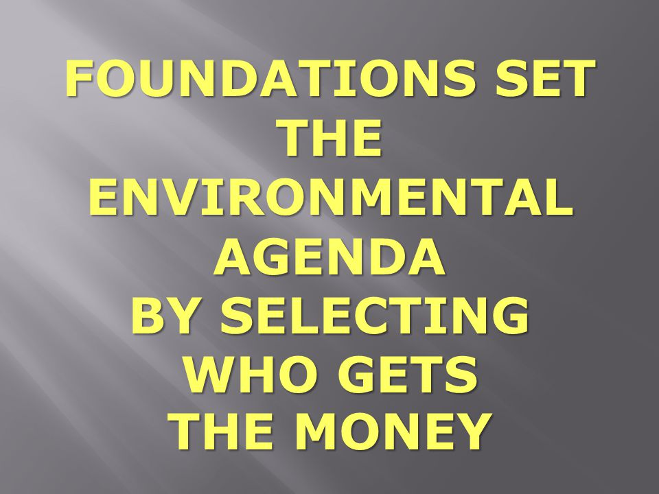 FOUNDATIONS SET THE ENVIRONMENTAL AGENDA BY SELECTING WHO GETS THE MONEY
